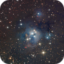 NGC 7129 The Small Cluster Nebula,                                Kevin Morefield