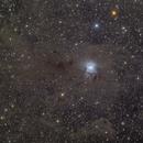 NGC 7023,                                Aaron Hakala