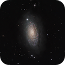 m63(sunflower galaxy) LHaRGB,                                *philippe Gilberton