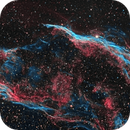 Final NGC6960 SHO,                                Tom Peter AKA Astrovetteman