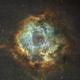 Rosette Nebula,                                aznights