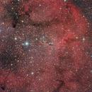 IC1396 the elephant trunk,                                Skiwalker