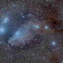 Blue Horsehead Nebula,                                Darius Kopriva
