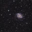 NGC 2997,                                Malcolm Ellis