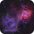 lion nebula hso version,                                Mark