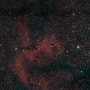 IC1396A, der Elefantenrüsselnebel,                                Peter Schmitz