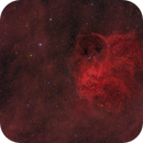 Sharpless 2-132,                                Brian Peterson