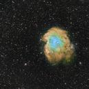 NGC 2174 - Monkey Nebula NBI Hubble Palette,                                Riccardo A. Balle...