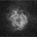 Rosette Nebula,                                dtrewren
