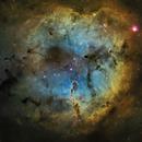 IC1396,                                Nick Cook