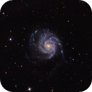 Pinwheel Galaxy (M101),                                John Rawls