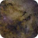 Vulpecula, from the Dumbbell Nebula to Brocchi's cluster,                                bbright