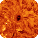 Sunspot AR2768 - High Resolution,                                Eric Coles (coles44)