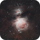 The Great Orion Nebula,                                Gabe Shaughnessy