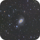 Ring Galaxy in Horologium,                                Geoff