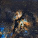 Sadr Region - IC1318,                                jmarinotero
