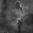 IC1396 - Elephant's Trunk Nebula,                                xanthic
