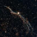 Western Veil Nebula - NGC6960,                                Daniel Lewis