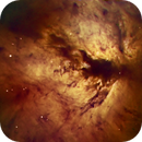 Flame Nebula, NGC 2024, Hubble Palette,                                Eric Coles (coles44)