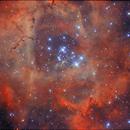 Ma meilleure Rosette / NGC 2244,                                Vincent R.