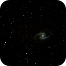 Great Barred Spiral Galaxy NGC 1365,                                morrienz