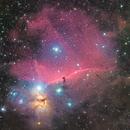 Horsehead and Flame Nebula,                                Mario Spenard