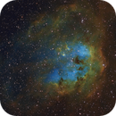 The Tadpoles - IC410,                                Ron