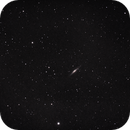 NGC 2683,                                Robert Johnson