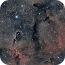 IC1396 The elephant trunk,                                Philippe Brunasso