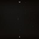 NGC 2903,                                SuburbanStargazer