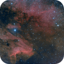 IC 5070,                                Michael Wolter