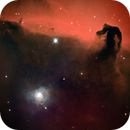 Horse Head and NGC 2023 Nebulae in NB,                                dts350z