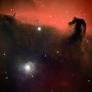 Horse Head and NGC 2023 Nebulae in NB,                                Glenn C Newell
