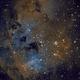 Tadpoles Nebula (IC 410) in SHO,                                Ara Jerahian