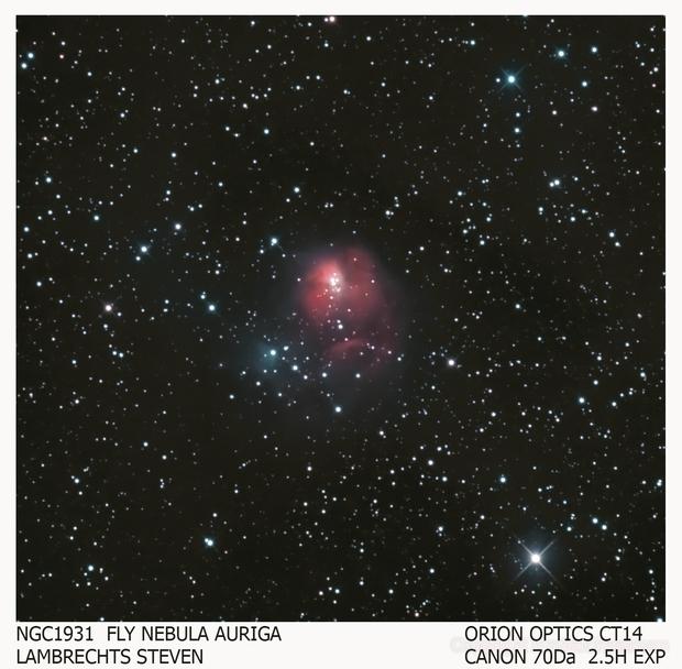 NGC1931,                                lambrechtssteven