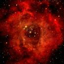 Rosette Nebula,                                Charles Harris