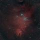 NGC 2264 - The Cone and Christmas Tree Cluster,                                Samuel Khodari