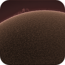 Sun Prominence (June 19th,2020),                                John Leader