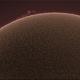 Sun Prominence (June 19th,2020),                                John Leader