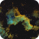 NGC 7000 North American Nebula,                                DavidT