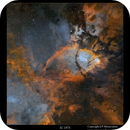 A 3D-study of IC 1795,                                Metsavainio