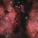IC 1318 (detail),                                James Pelley