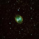 Dumbbell nebula,                                Tom Delaney