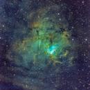NGC 1491,                                Miles Zhou
