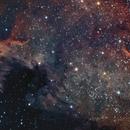 NGC 7000 - North America Nebula,                                robo9981