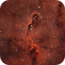 IC1396 Elephant's trunk nebula,                                Victor