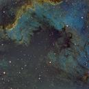 NGC 7000 North American Nebula,                                scott1244