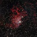 Fllaming Star Nebula,                                Ray Heinle