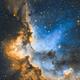 The Wizard Nebula NGC7380,                                Rathi Banerjee