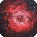 Rosette Nebula,                                Eric Milewski